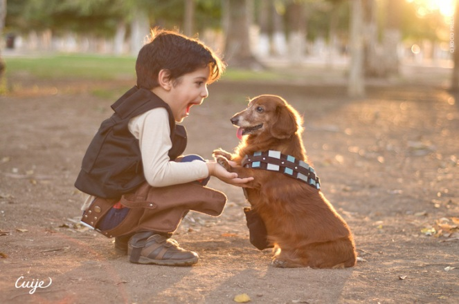 star-wars-cosplay-adorable-han-solo-and-chewbacca